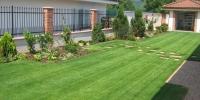 travnik zahrada