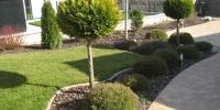 zahradne stromceky