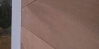 Detail štruktúry dreva materiál ( Céder )