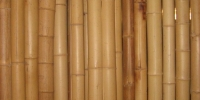 Exotická sprcha, Bambus