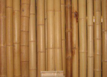 sprcha, materiál (Bambus) (2)
